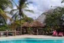 Kenya Flamingo Villas / The greatest Beach Club in Malindi. Enjoy your stay !!!