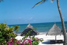 Mayungu Beach Restaurant / Just few minutes from Malindi, is located the exclusive and private Mayungu Beach. This bay located in the heart of the marine park between Malindi and Watamu, will be your oasis of white sand and blue sea