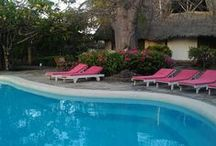 Flamingo Villas POOL BAR / The great baobab surrounds the sea water swimming pool and pool bar, where we serve free tea, coffee and cakes every afternoon. Free WIFI service at the public areas.