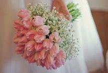 Esküvő és eljegyzés <3