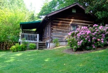 Chris's Cabin / Enjoy the cozy amenities while relaxing in this comfy cabin which was probably once enjoyed by early settlers and fur trappers. For those who want to enjoy the experience of staying in a real log cabin like those of our ancestors, this Asheville cabin can't be beat.