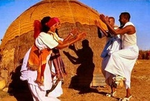 Nomadic Life / Experience the Somali nomadic life.
