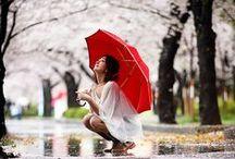 [ Lovely rainy days ]