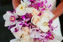 Wedding Decor; Table Centerpieces, Chair, Aisle Decor, Floral Chandeliers, Bouquets, Music, Fabric / Party & Event Supplies;  Wedding Music, Classic & Classical Wedding Prelude Songs, Wedding Decor; Pin Gorgeous Wedding Florals, Flowers, Chandeliers, Tablescapes with Flowers, Crystals, Beading, Hanging Flowers, Curtains, Fabrics, Drapery,Topiaries, Flower Arrangements, Bouquets, Tablecovers, Chair Sashes & Aisle Decor.