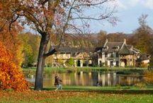 Autumn and or Versailles / Autumn and or Versailles