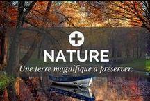 Nature / Nature : De magnifiques photographies pour rêver et être transporté dans un monde magnifique. La terre est si belle, apprécions la et préservons la. Abonnez-vous ! - par POSITIVR.fr