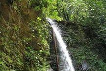 Madamas Falls - Trinidad