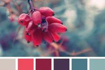 [D] Color Inspirations
