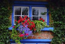 Kapı & Pencere
