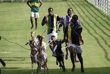 Ziegen- und Krabbenrennen auf Tobago