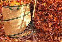 """ஜ """"Fall"""" in Love ஜ / All things autumn....including halloween and thanksgiving..scenic pics, crafts and more!"""