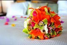 Wedding Blooms / Beach-inspired florals