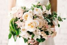 Beautiful Bouquets / by Rhiannon Nicole Bosse