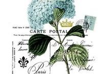 pRiNtAbLeS & tRaNsFeRs / by Beatrice Lombard