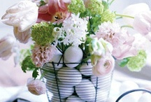Easter/Spring / by Lauren Rutherford