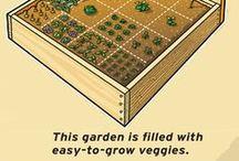 Gardening Fun / by Barbara Zaferopolos