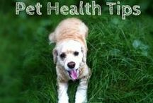 Pet Health / Pet's are part of the family, that's why we care about pet health!