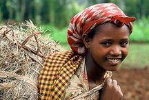 I dream of Africa / by Cami Zuniga