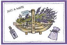 Stempelen - Lavendel / In combinatie met de stempelset Wonderful day met lavendel thema. Stempels van Hobby Art in Nederland verkrijgbaar bij Multihobby. Creëer je eigen kaart met deze stempelsets