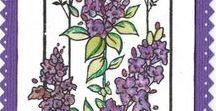 Stempelen - Wonderful day / Gecombineerd met de Lavendel stempelset. Stempels van Hobby Art in Nederland verkrijgbaar bij Multihobby. Creëer je eigen kaart met deze stempelset