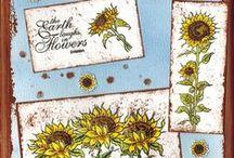 Stempelen - Sunflowers / Stempels van Hobby Art in Nederland verkrijgbaar bij Multihobby. Creëer je eigen kaart met deze stempelset