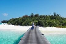Maldives Magic / Paradise on earth. Why the Maldives is everything you imagine and more.