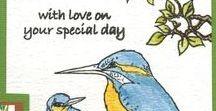 Stempelen - Kingfishers / Stempels van Hobby Art in Nederland verkrijgbaar bij Multihobby