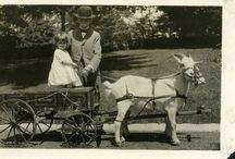 History of Reeves-Reed Arboretum