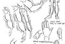 anatomy / drawing, torso,female,male