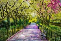 Our Favorite Gardens / Other gardens, arboreta, & parks we love!