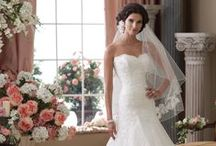 Wedding Dresses / Ideas for your #WeddingDress from Lakeview Manor a stunning #WeddingVenueInDevon