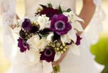 Bridal Bouquets / Ideas for your Bridal Bouquet