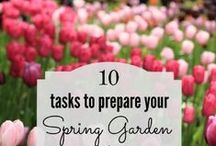 Spring Gardening Tips / Tasks and ideas to help you get your garden growing!