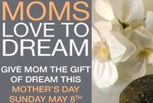 Specials at Dream Spa & Salon / Enjoy very special dreamy offers from Dream Spa & Salon, CT.
