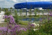 Green infrastructure - Rain garden / Aménagements alternatifs, noues, gestion des eaux pluviales, drainage
