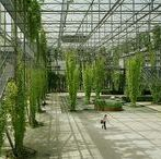 Genie végétal / soutènements, requalifications de berges, revégétalisations de berges de talus, ...