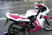 Moto in pink / Donne e motori..non solo!  Anche e soprattutto vere motocicliste, protagoniste in primo piano o da passeggero in questo mondo di avventura a due ruote