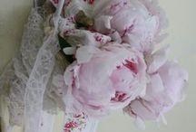 La pivoine / Ma fleur préférée...