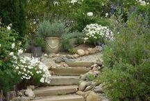 Flower power to gardens