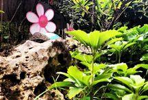 #Garden / Idee e colori