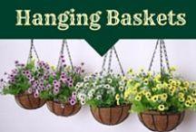 Hanging Baskets / hanging flower basket inspiration
