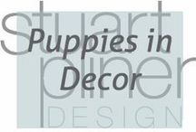 Puppies in Decor / Our favorite puppies enjoying beautifully designed spaces.