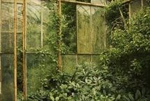 magic.gardens / creative and inspirational green spaces and ideas