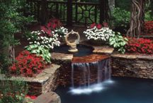 Lovely Garden / Planting, landscape, garden, any things about plant