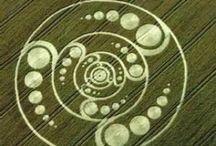 Crop circles / by Kai Luz de Sirio