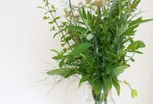 green / by Watershed Floral