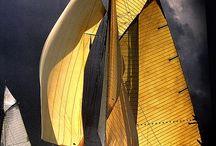 Sailing / by Briscoe