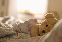 Teddy bears / Teddy