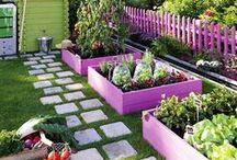 bağ bahçe balkon