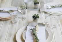 home - table setting / table setting